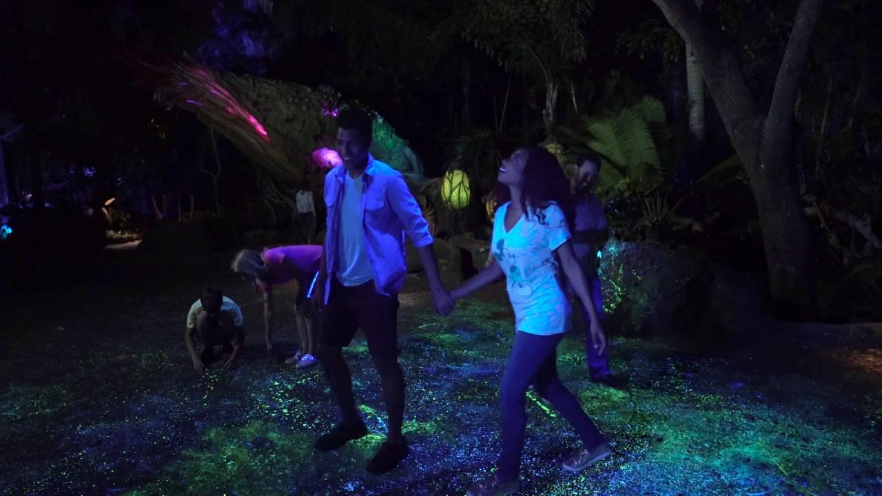 bioluminescence-on-pandora-the-world-of-avatar