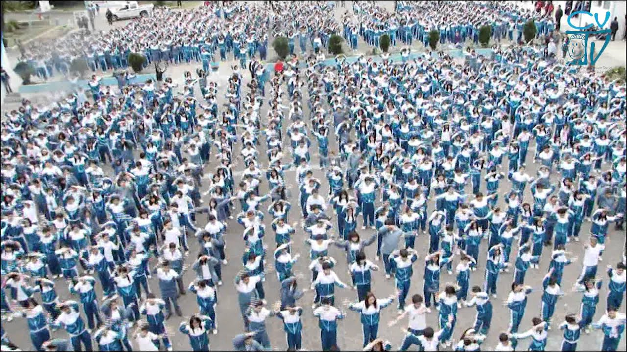 find a flash mob
