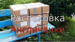 Распаковка посылки из Англии   Пазлы   Деревянные пазлы   Винтажные пазлы