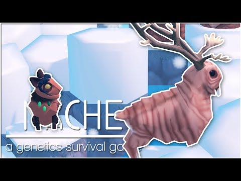Decidedly Disastrous Decisions Were Made • Niche: Snowy Mountain Update! - Episode #41