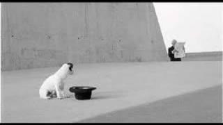 [3.49 MB] Paul van Dyk feat Wayne Jackson
