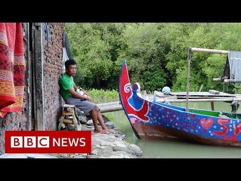 Indonesia: Alone in a sinking village - BBC News