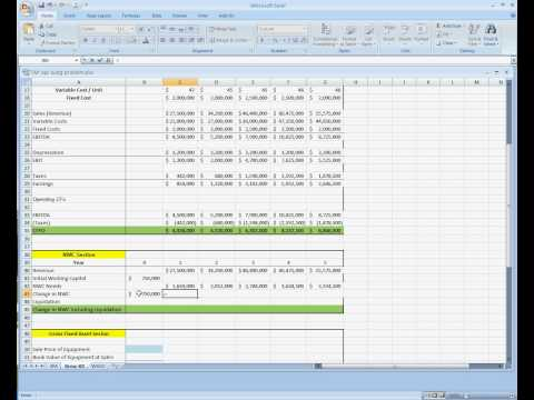 Project Analysis for Capital Budgeting (TAP Brew Kit).avi