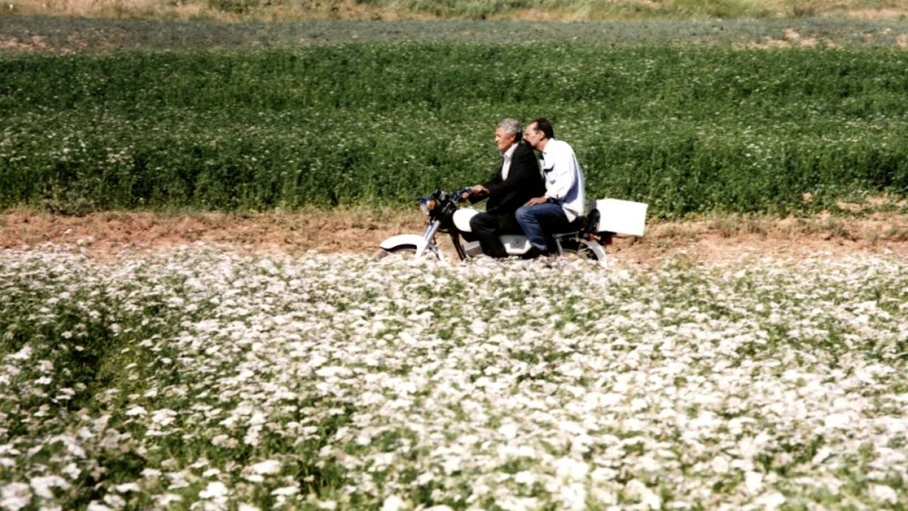 Картинки по запросу abbas kiarostami the wind will carry us