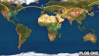 What Herpes Could Tell Us About Ancient Human Migration