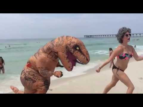 T-Rex VS The Beaches Of Florida
