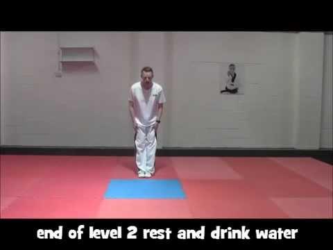 Taekwondo workout
