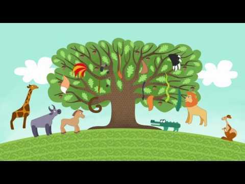 Мультфильм койрыклар на татарском языке