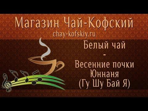 Чай из Китая Весенние почки Юннаня: заваривание! [Chay-Kofskiy.ru]