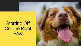 WSHS University/Enjoy Your Dog presents: How to choose the right dog and basics of dog ownership