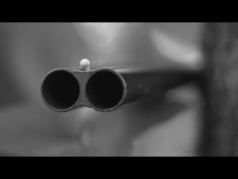 Loud Neighbor • The Fellonship (official video)