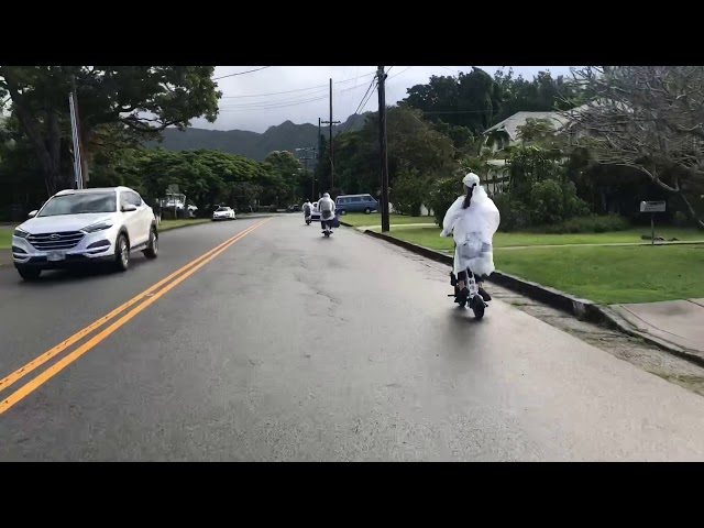 URB-E Hawaii Manoa Falls Ride and Hike 2019