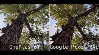 OnePlus 6T vs Google Pixel 3XL Camera Comparison - Winner???