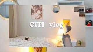 [Vlog] 봄맞이 방청소 대작전   집꾸미기   룸투…