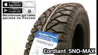 Cordiant SNO-MAX PW-401 /// обзор