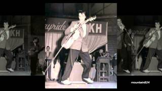 Elvis Presley - A Mess Of Blues  ( alt  take )