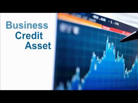 Business Credit Reality