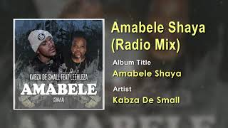 Kabza De Small FT Leehleza - Amabele Shaya (Radio Mix) Official Song (Audio) - South Africa Music