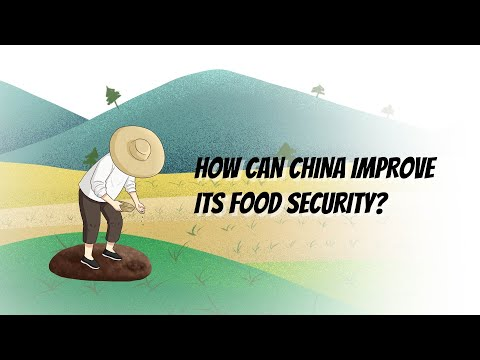 How can China improve its food security?