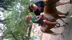 Pony rides at jacksonville chapel