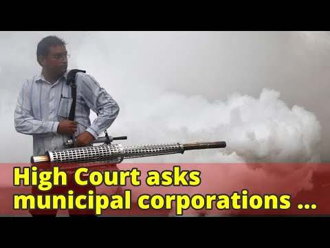 High Court asks municipal corporations to map dengue affected areas in Delhi