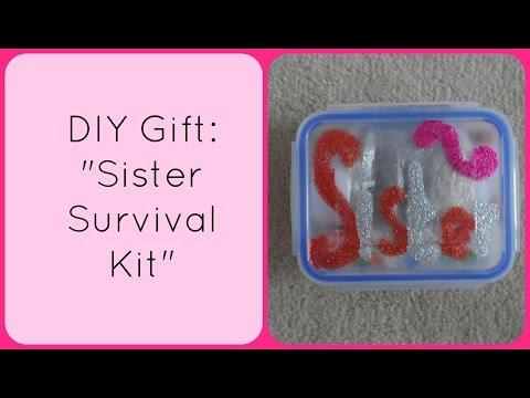 Diy Christmas Gift Sister Survival Kit