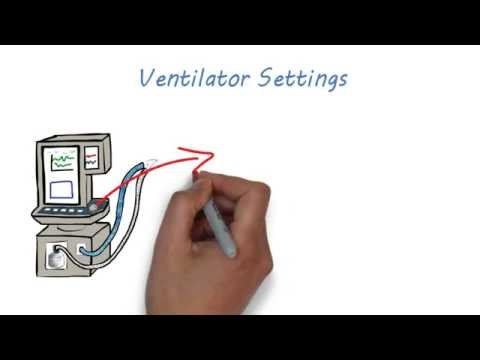 Mechanical Ventilation 101