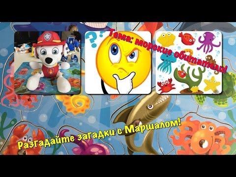🐙Загадки для детей Морские животные С Маршалом разгадайте загадки! Щенячий патруль! Animal riddles!