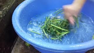 Món canh tép đồng nấu rau nhuc #2