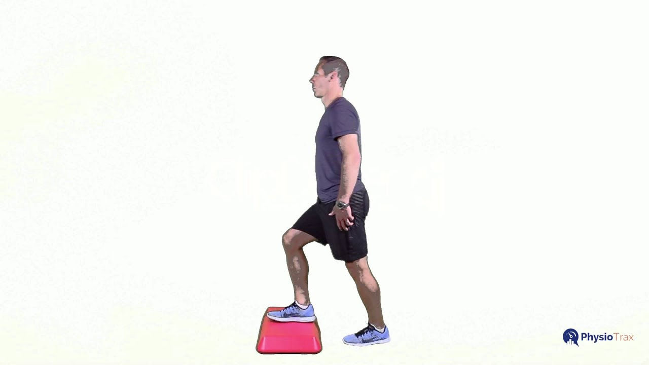 Pics For > Lateral Step Up Exercise