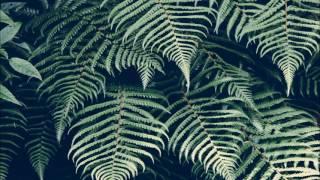 Dj Bhastly Jungle Terror mix 4.