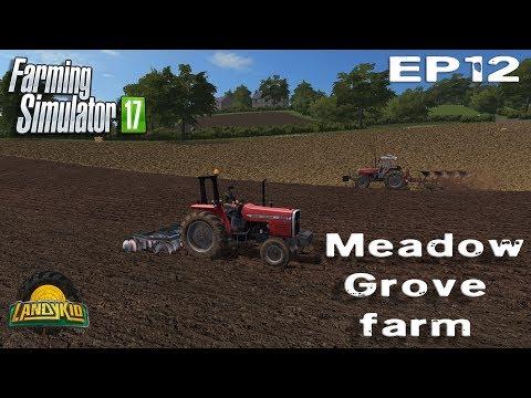 Farming Simulator 17  | Meadow Grove | EP12