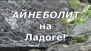 Матвеев Борис / Айнеболит на Ладоге / Пушкин / трейлер