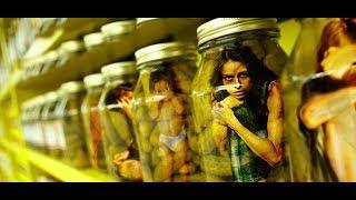 Seks köləsi, qul kimi davranış… – Avropada işləmək adı ilə aldadılan azərbaycanlılar