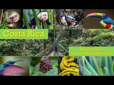 Costa Rica 2016  - Naturparadies zwischen Karibik und Pazifik