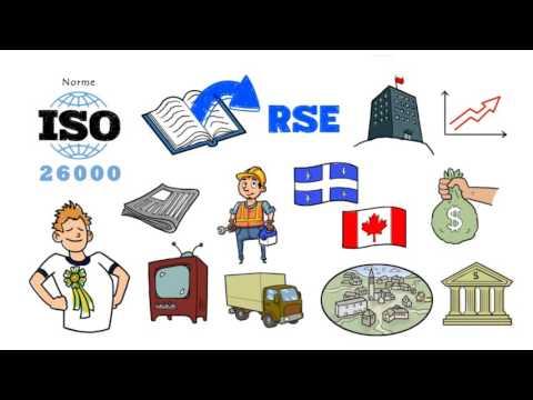 Capsule #1 - Introduction à la responsabilité sociale d'entreprise (RSE)