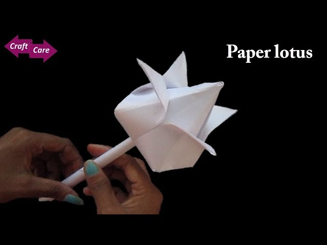 Diy how to make lotus flower with paper paper flower origami diy how to make lotus flower with paper paper flower origami craft care mightylinksfo