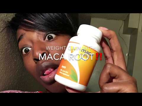 WEIGHT GAIN WITH MACA ROOT ‼️