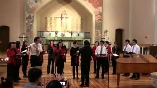 2013瑞典斯德哥尔摩华人合唱团金秋音乐会--05Svangås鸿雁