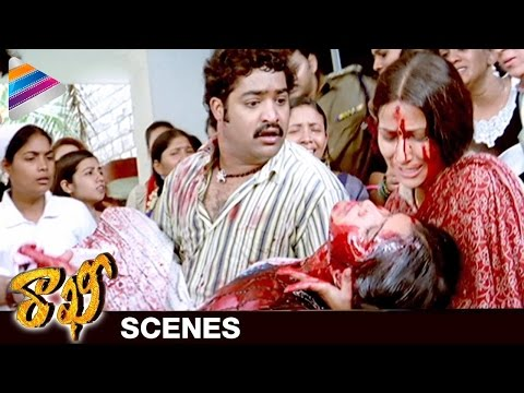 Amit Kumar Tiwari assassinate Sri Latha | Rakhee  Movie Scenes | NTR | Ileana | Telugu Filmnagar