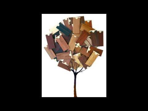 Asya Ağaçları, Avrupa Ağaçları, Ağaç Numuneleri, Ahşap Numuneleri, 100 Ağaç, Yüz Ağaç