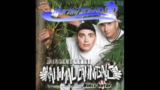 Watch Animal Cannibals Budapest Nyaron video