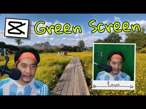 CapCut วิธี ตัดต่อวีดีโอ ทําฉากหลังเขียว Green screen (CapCut Edit Tutorial Green screen)
