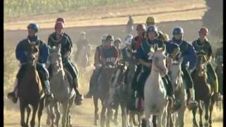 endurance riding info video english v1 0