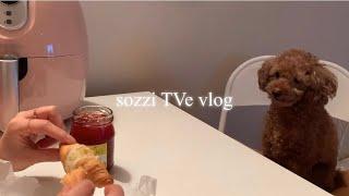 [Vlog] 소찌 티브이 / 홈베이킹 취미생활 / 집순…