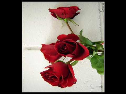 Diana Reyes Rosas