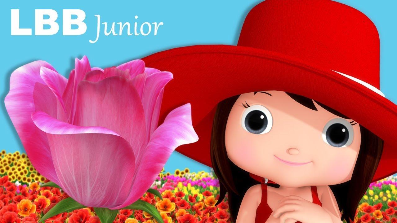 Flowers song original kids songs by lbb junior youtube flowers song original kids songs by lbb junior mightylinksfo