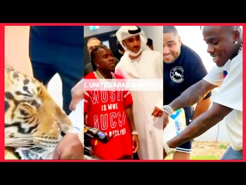 Dababy Cancelled In America Now With The Royal Family Of Dubai Feeding Lions And Tigers
