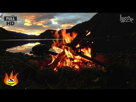 Lakeside Campfire with Relaxing Nature Night Sounds (HD)