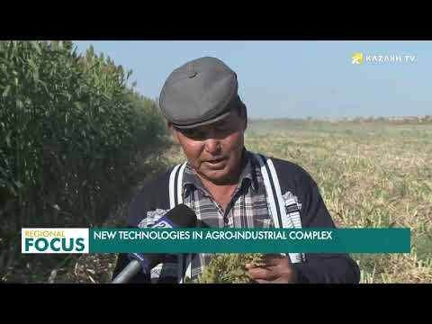 Development of agriculture is a priority for sustainable development of Kazakhstan's economy